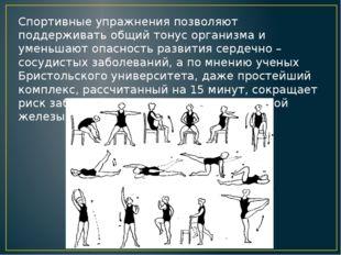 Спортивные упражнения позволяют поддерживать общий тонус организма и уменьшаю