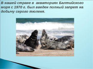 В нашей стране в акваториях Балтийского моря с 1970 г. был введен полный зап