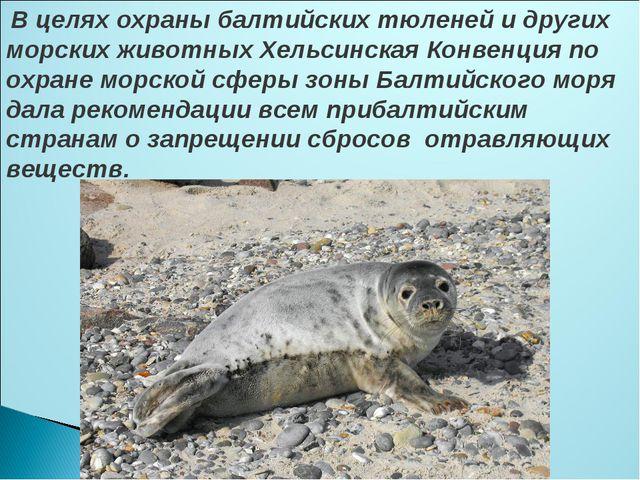 В целях охраны балтийских тюленей и других морских животных Хельсинская Конв...