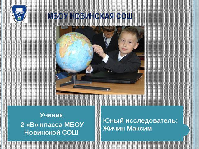МБОУ НОВИНСКАЯ СОШ Ученик 2 «В» класса МБОУ Новинской СОШ Юный исследователь...