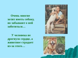Очень многие хотят иметь собаку, но забывают о ней заботиться… У человека не