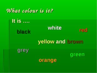 What colour is it? It is …. white yellow and brown black grey orange green red