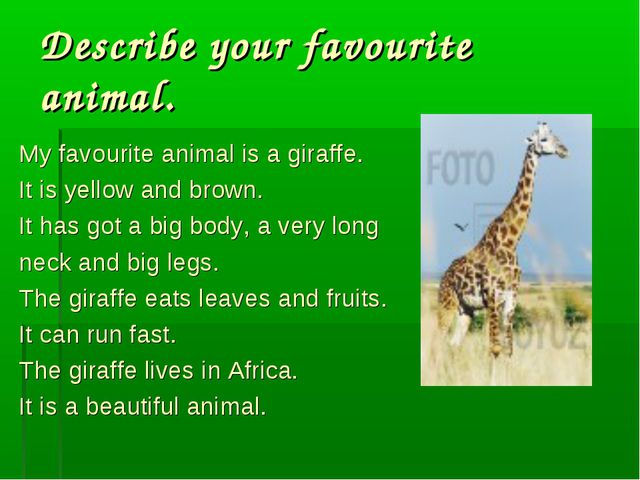 Describe your favourite animal. My favourite animal is a giraffe. It is yello...