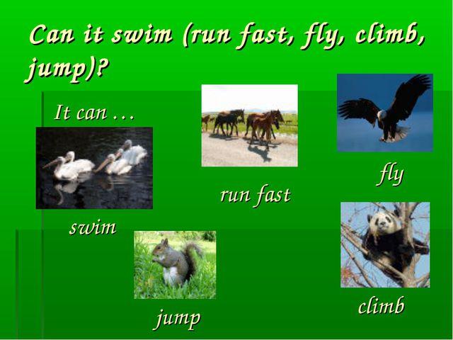 Can it swim (run fast, fly, climb, jump)? It can … swim run fast fly climb jump