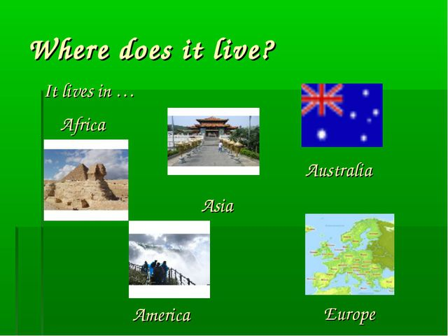 Where does it live? It lives in … Africa Asia America Europe Australia