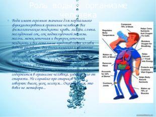 Вода имеет огромное значение для нормального функционирования организма челов