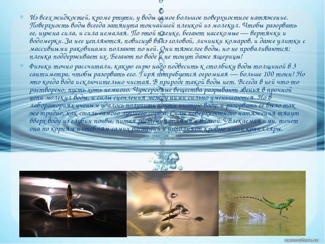 Из всех жидкостей, кроме ртути, у воды самое большое поверхностное натяжение....