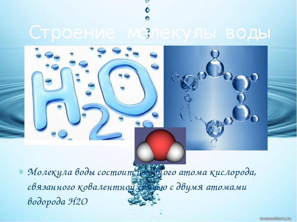 Молекула воды состоит из одного атома кислорода, связанного ковалентной связь...
