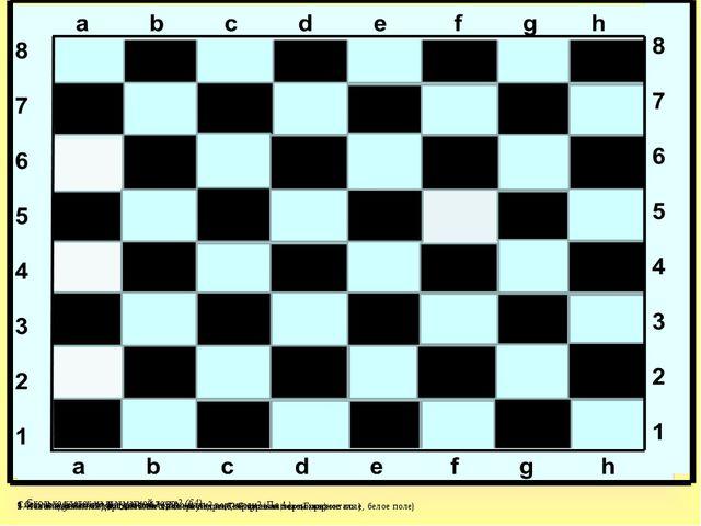 1. Какая шахматная дорожка тянется слева направо? Справа на лево(Горизонталь....