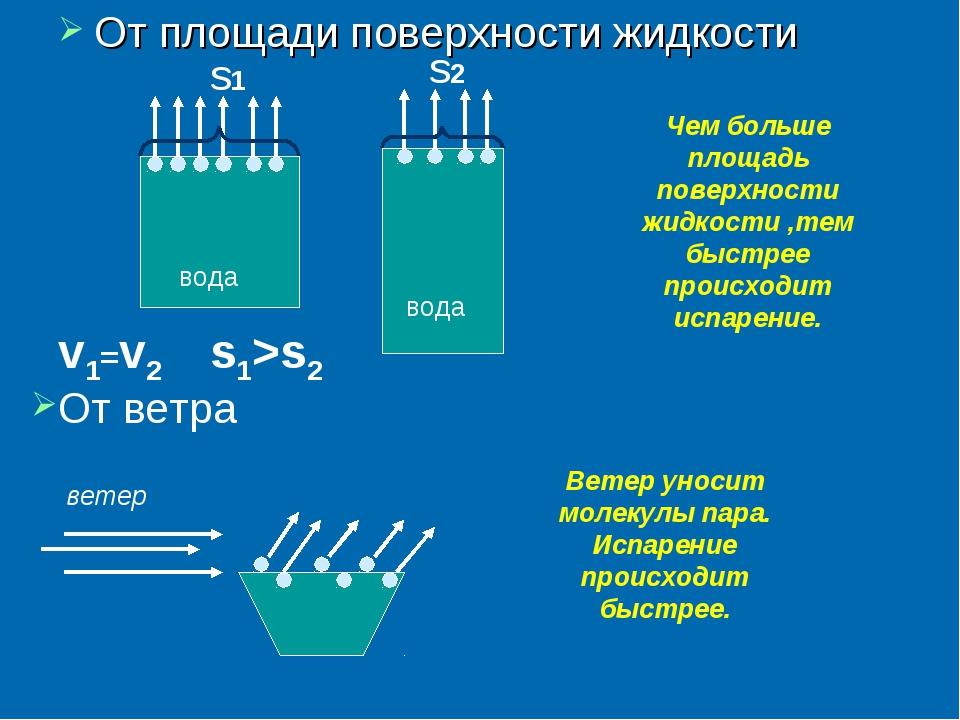 От площади поверхности жидкости вода вода v1=v2 Чем больше площадь поверхност...