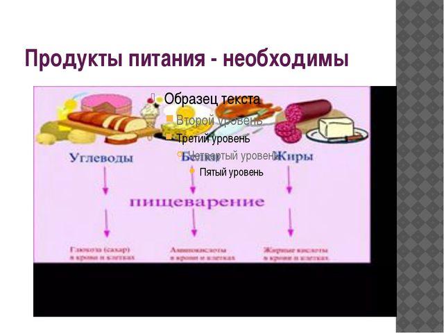 Продукты питания - необходимы