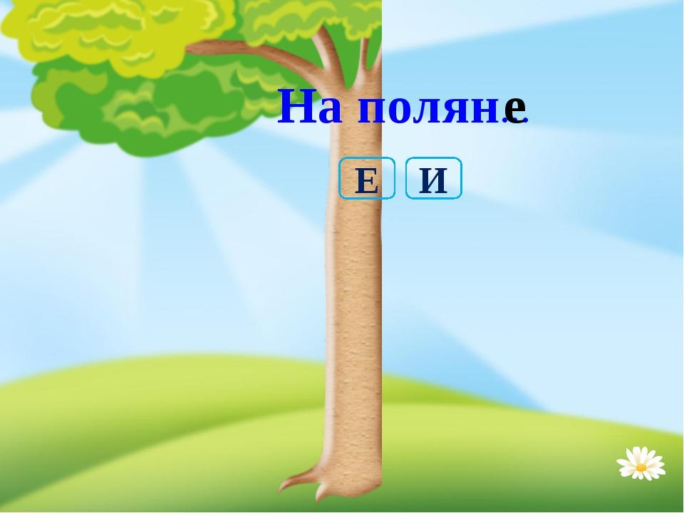На полян… е И Е