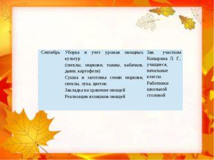 Сентябрь Уборка и учет урожая овощных культур (свеклы, моркови, тыквы, кабач