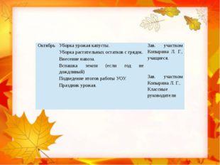 Октябрь Уборка урожая капусты. Уборка растительных остатков с грядок. Внесен