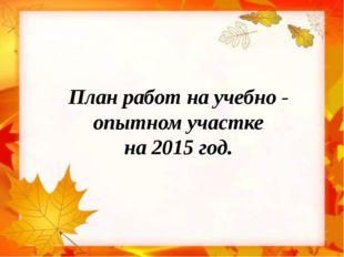 План работ на учебно - опытном участке на 2015 год.
