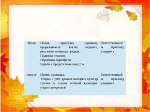 Июль Полив, прополка сорняков, прореживание свеклы, моркови, рыхление почвы