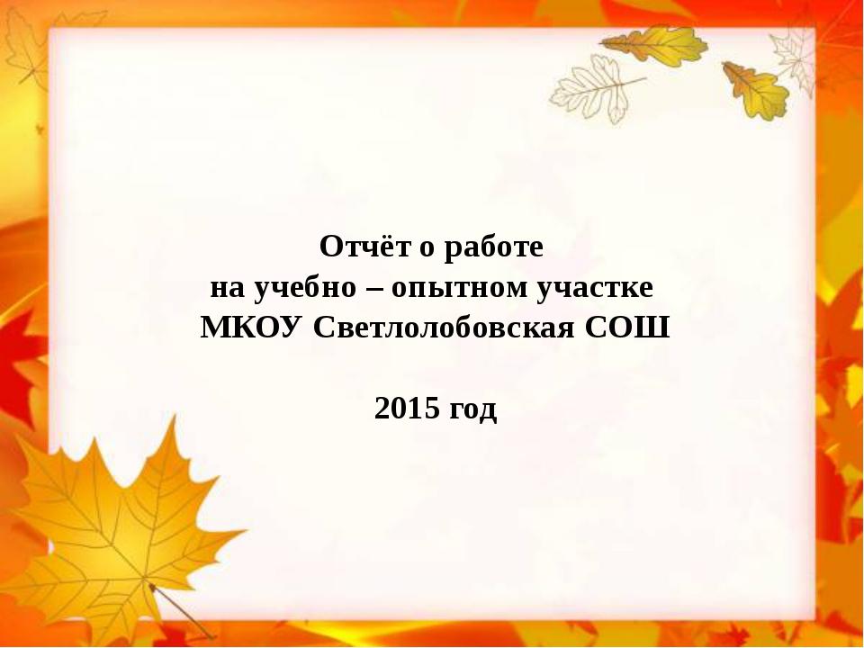Отчёт о работе на учебно – опытном участке МКОУ Светлолобовская СОШ 2015 год