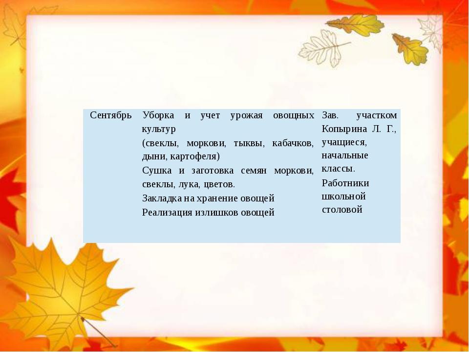 Сентябрь Уборка и учет урожая овощных культур (свеклы, моркови, тыквы, кабач...