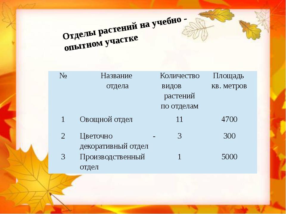 Отделы растений на учебно - опытном участке № Название отдела Количество вид...