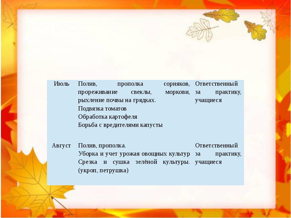 Июль Полив, прополка сорняков, прореживание свеклы, моркови, рыхление почвы...