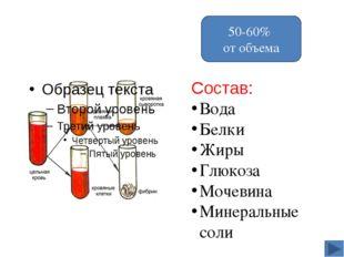 5. Рассмотрите кровь человека на малом увеличении, а затем на большом увеличе