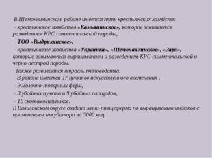 В Шемонаихинском районе имеется пять крестьянских хозяйств: - крестьянское