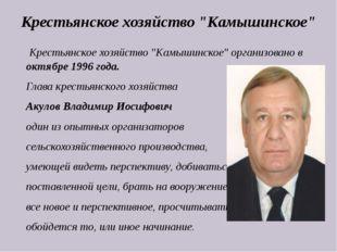 """Крестьянское хозяйство """"Камышинское"""" организовано в октябре 1996 года. Глава"""