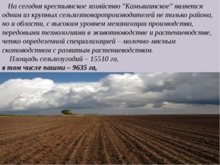 """На сегодня крестьянское хозяйство """"Камышинское"""" является одним из крупных се"""