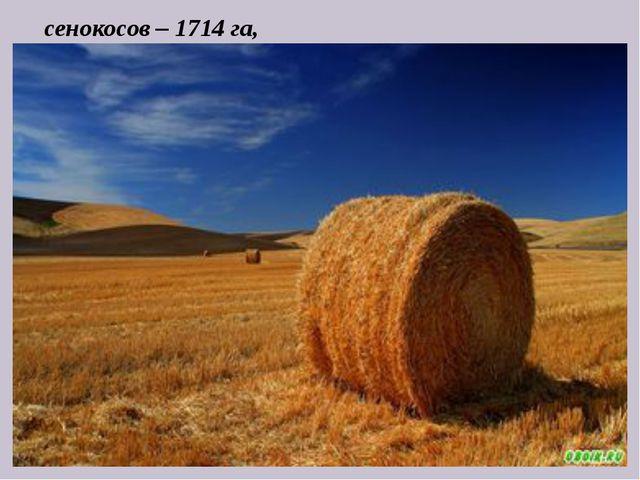 сенокосов – 1714 га,