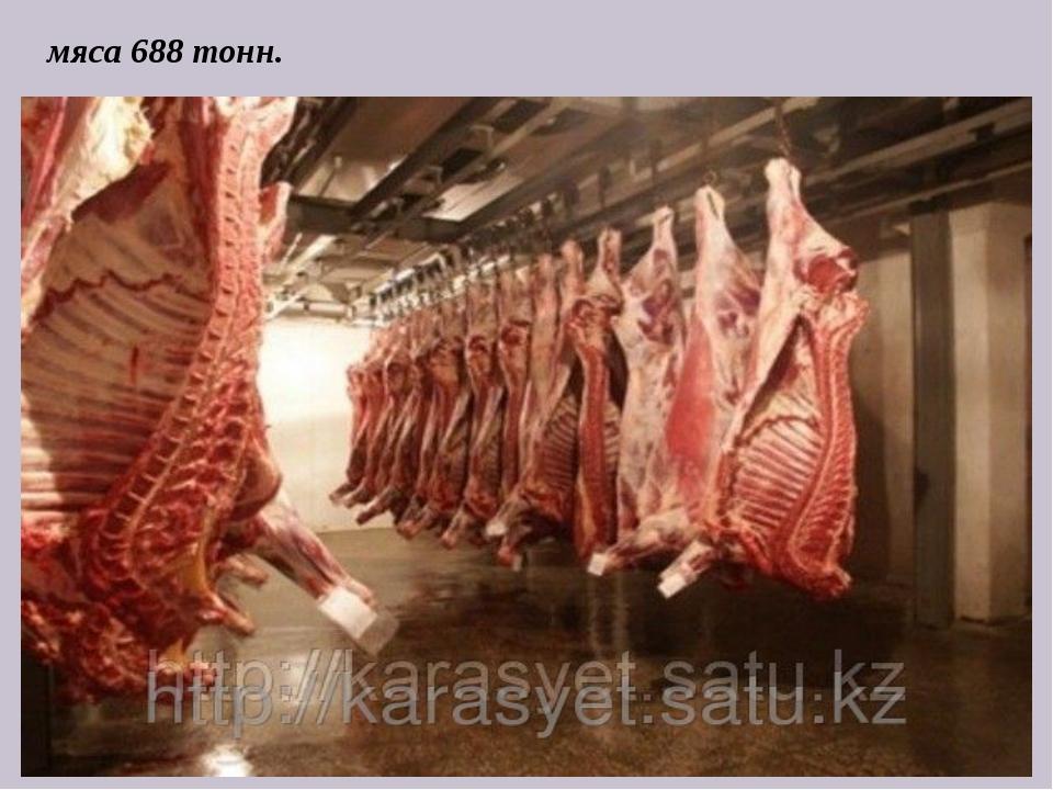 мяса 688 тонн.
