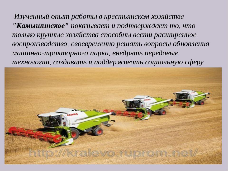 """Изученный опыт работы в крестьянском хозяйстве """"Камышинское"""" показывает и по..."""