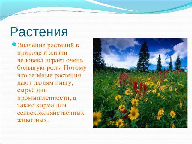 Растения Значение растений в природе и жизни человека играет очень большую ро...