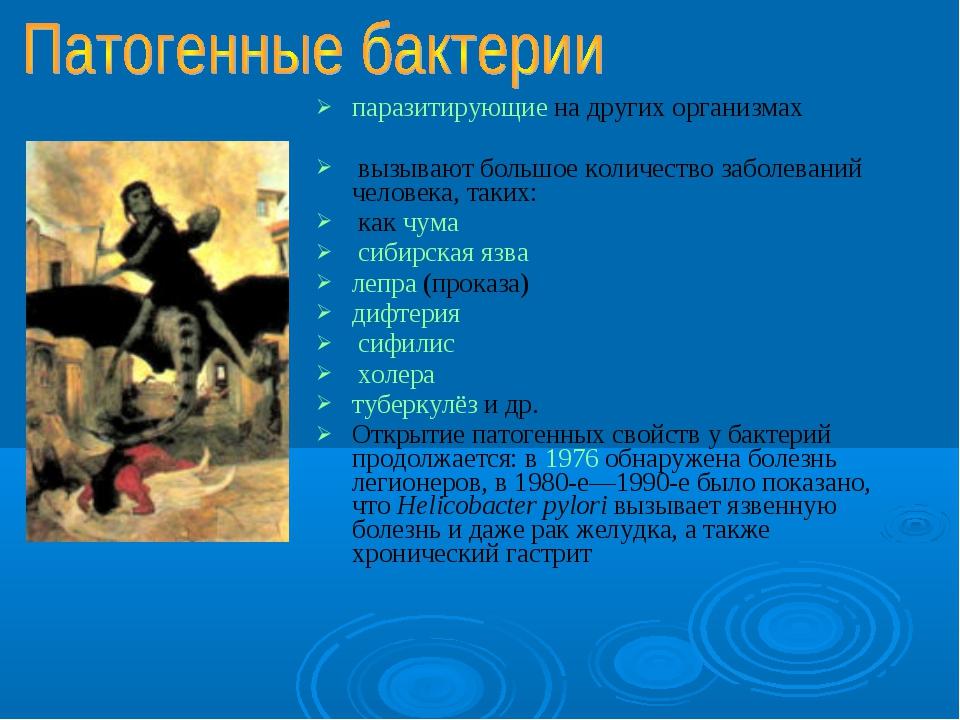 паразитирующие на других организмах вызывают большое количество заболеваний ч...
