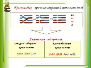 Кроссинговер - причина нарушений сцепления генов AB Ab aB ab Генотипы содержа