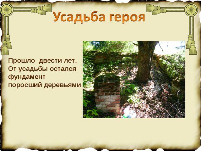 Прошло двести лет. От усадьбы остался фундамент поросший деревьями