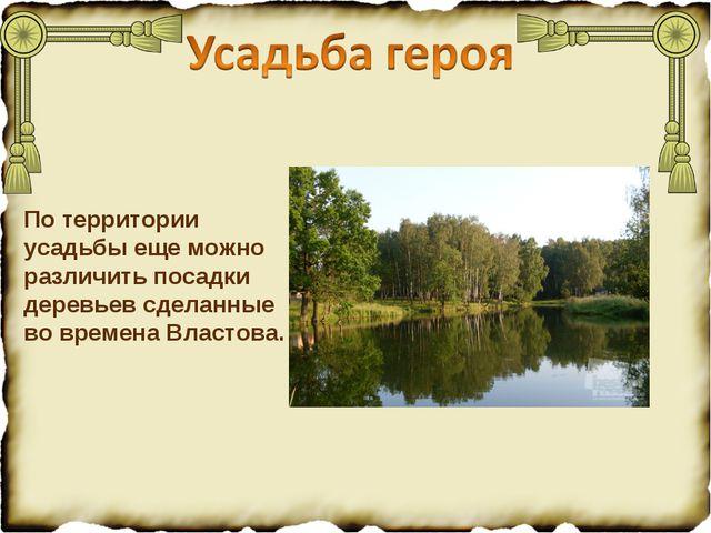 По территории усадьбы еще можно различить посадки деревьев сделанные во време...