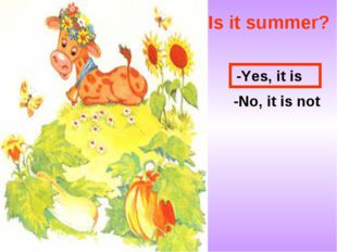 Is it summer? -Yes, it is -No, it is not