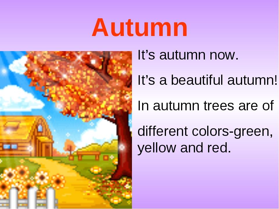 Autumn It's autumn now. It's a beautiful autumn! In autumn trees are of diffe...