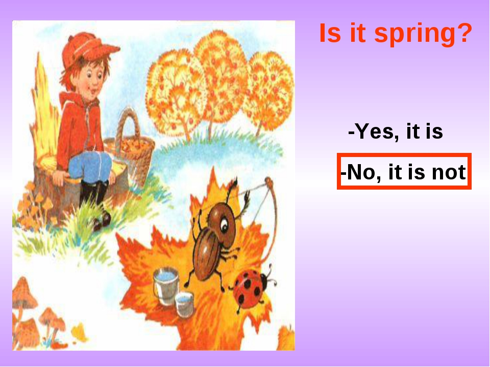 Is it spring? -Yes, it is -No, it is not