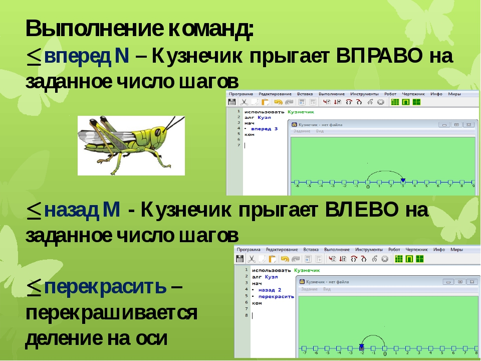 Выполнение команд: ∙ вперед N – Кузнечик прыгает ВПРАВО на заданное число шаг...