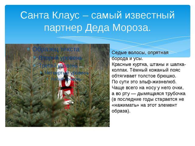 Санта Клаус – самый известный партнер Деда Мороза. Седые волосы, опрятная бор...