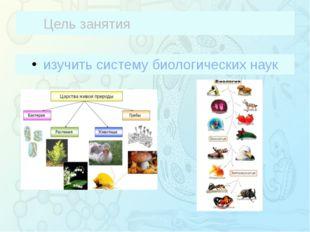 Цель занятия изучить систему биологических наук Зорина Наталья Николаевна, уч