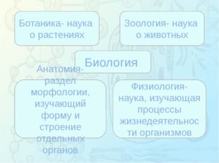 Зорина Наталья Николаевна, учитель биологии и экологии Биология Ботаника- на