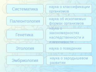 Зорина Наталья Николаевна, учитель биологии и экологии Систематика Палеонтол