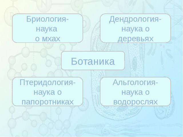 Зорина Наталья Николаевна, учитель биологии и экологии Ботаника Бриология- н...