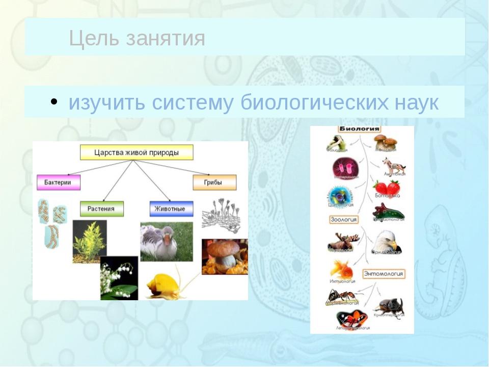 Цель занятия изучить систему биологических наук Зорина Наталья Николаевна, уч...