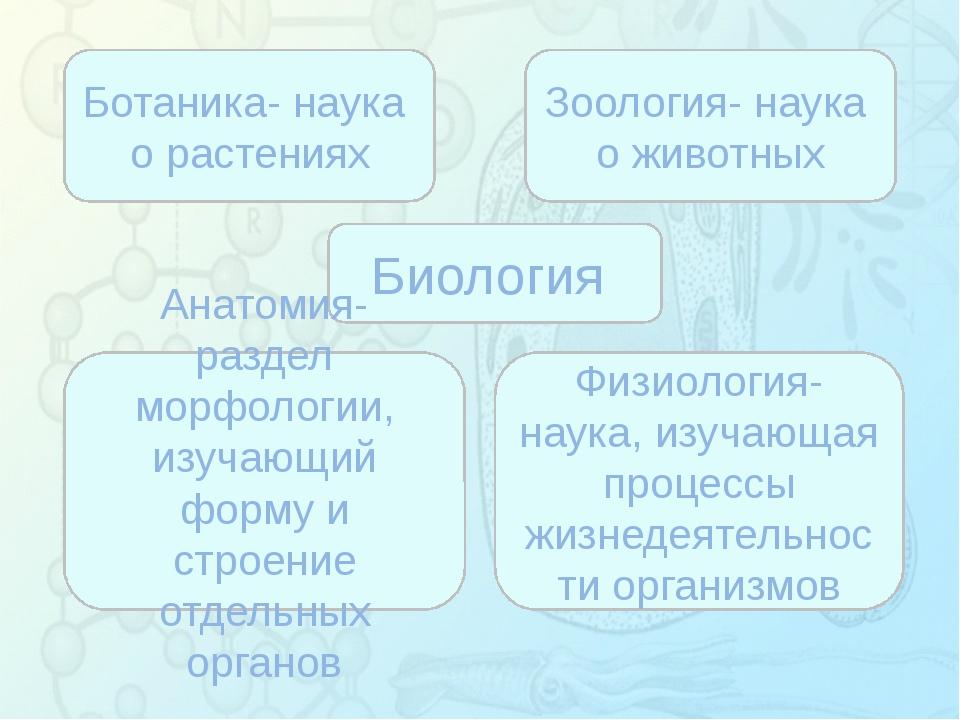 Зорина Наталья Николаевна, учитель биологии и экологии Биология Ботаника- на...