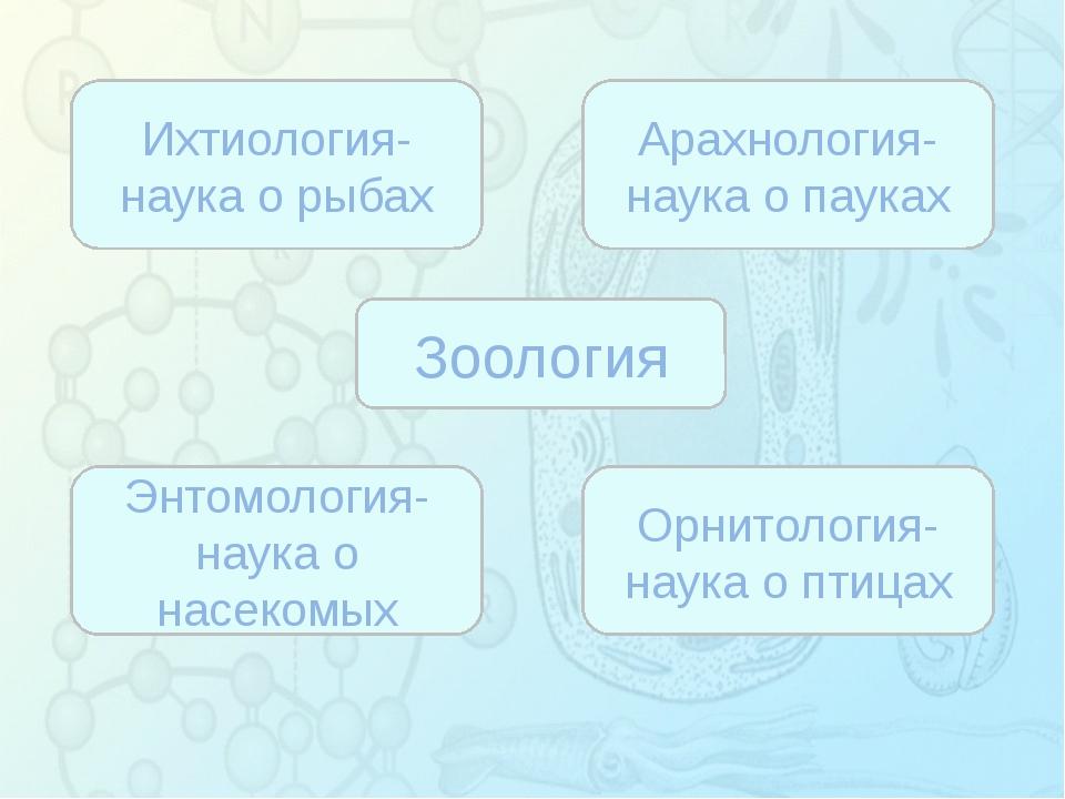 Зорина Наталья Николаевна, учитель биологии и экологии Зоология Ихтиология-...