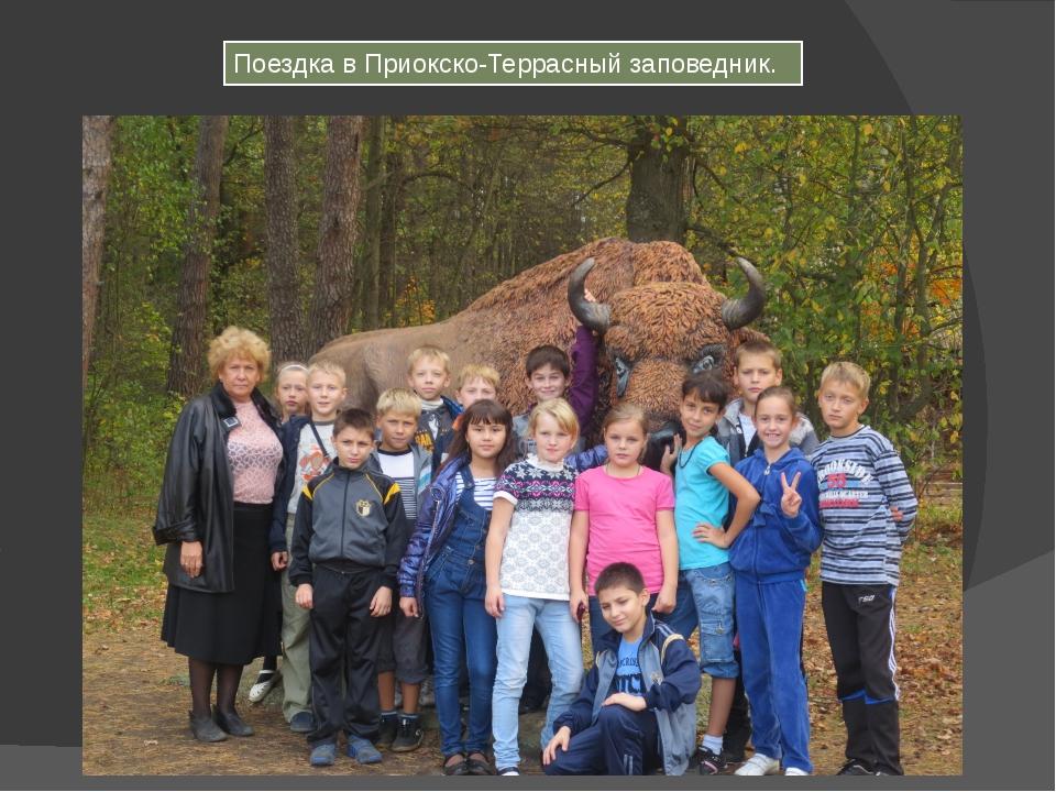 Поездка в Приокско-Террасный заповедник.