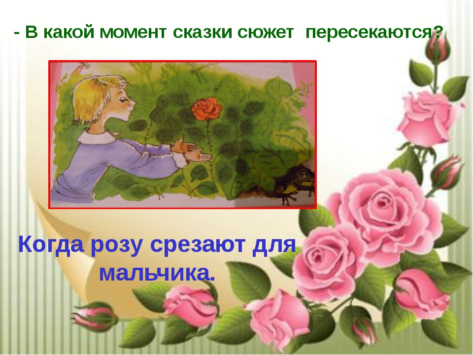 - В какой момент сказки сюжет пересекаются? Когда розу срезают для мальчика.
